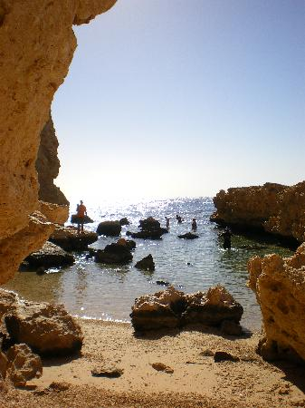 Pearl of South Sinai: Ras Mohammed - amazing snorkelling & diving