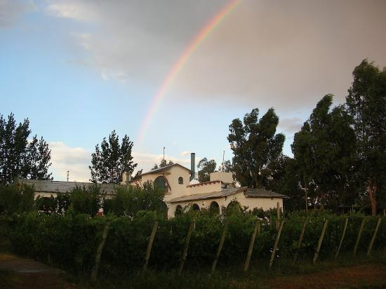 Casa Franca, posada de campo: la viña y la posada después de una lluvia