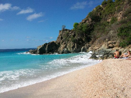 Shell Beach Picture Of St Barthelemy Caribbean