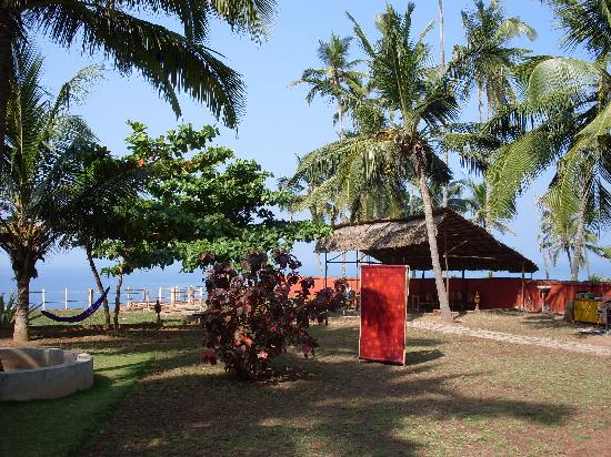 Varkala Golden Beach Resort: il giardino sl cliff