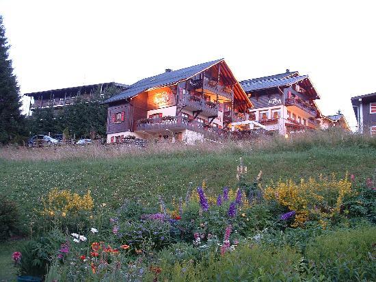 Chalet-Hotel Alpina: alpina