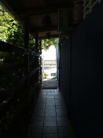 Mucho Gusto: coveredwalkfromMuchoGustotoMalecon