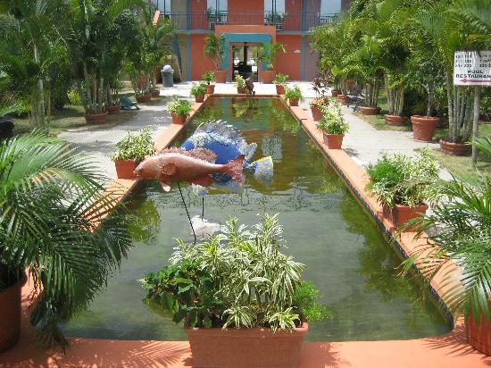 Quality Inn El Tuque: Lush Tropical Turtle Pond
