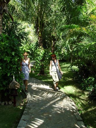 walking trough cham villas