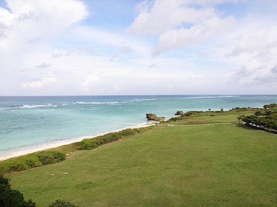 Hotel Nikko Alivila Yomitan Resort Okinawa: ホテルからビーチの景色