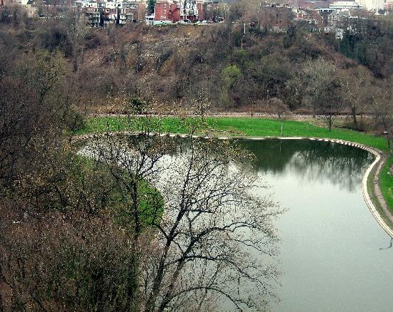 Schenley Park: Pond View
