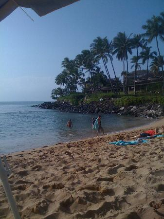Napili Kai Beach Resort: Beach Photo