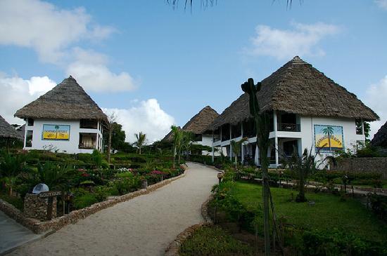 Jacaranda Beach Resort: vialetto che dal ristorante porta alle camere e reception