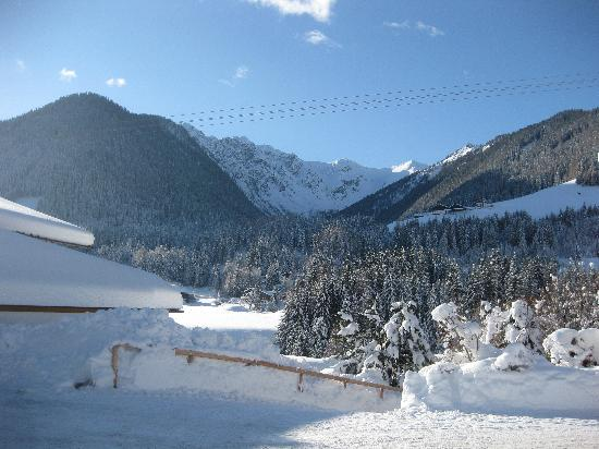 Panorama Hotel CIS: Wonderful view - the Alps