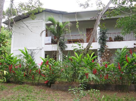 La Mariposa Spanish School and Eco Hotel: hotel from the garden