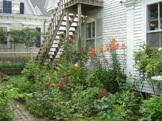 Ampersand Guesthouse: Lovely Ampersand Garden