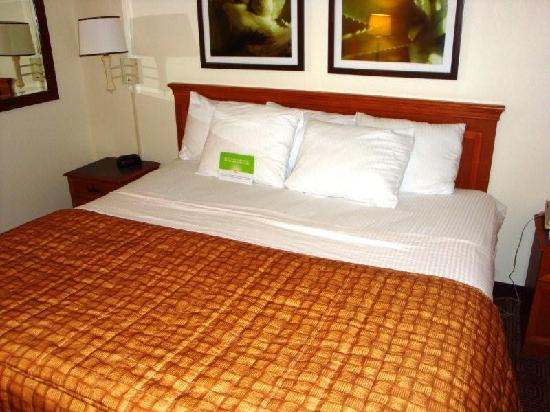 La Quinta Inn & Suites Ft Lauderdale Cypress Creek: King bed