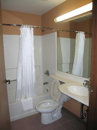 Microtel Inn & Suites by Wyndham Clarksville : Room 110 Bathroom