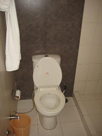 Taj Home Stay: Toilet