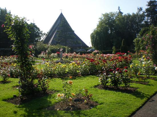 National Botanic Gardens: A Section Of The Rose Garden