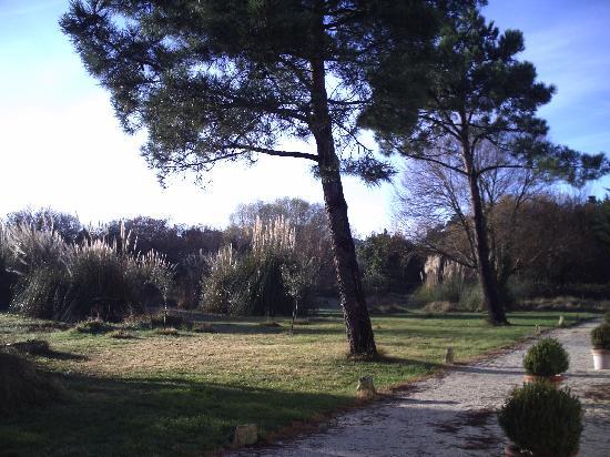 Hotel Residence Les Alizes : le jardin de la résidence