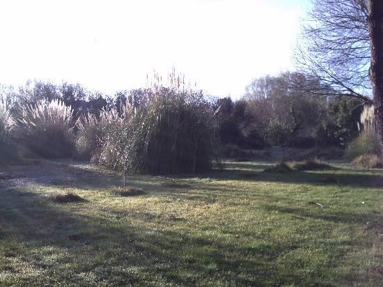 Hotel Residence Les Alizes : le jardin sous le soleil de décembre!