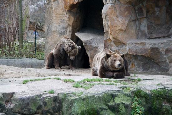 Zoologischer Garten (Berlin Zoo): Berlin Zoo
