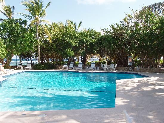 The Palms at Pelican Cove: pool