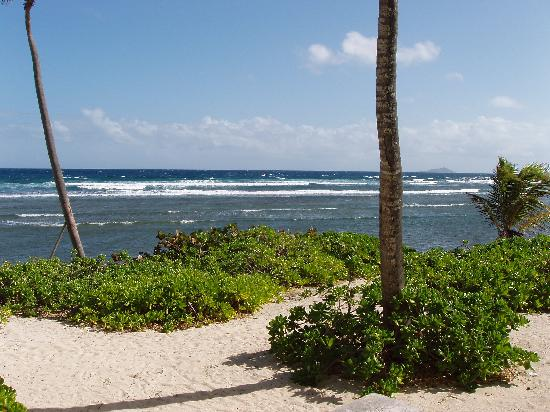 The Palms at Pelican Cove: beach