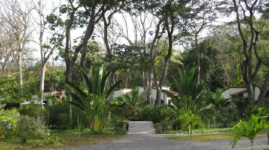 Villas Hermosas: The immaculate grounds.