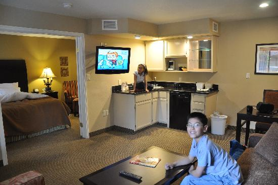 BEST WESTERN Plus Meridian Inn & Suites, Anaheim-Orange: Nice flat screen TV in the sitting