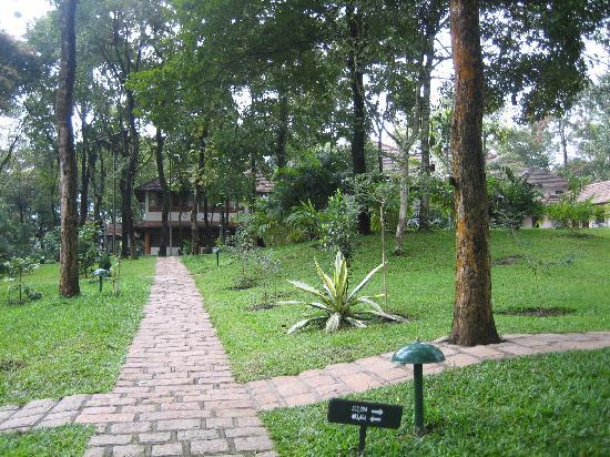 Greenwoods Resort: Pathway