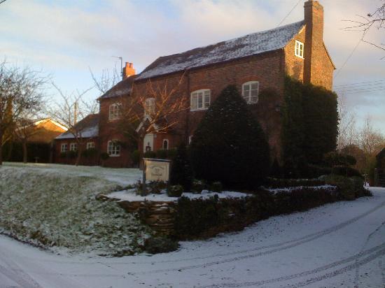 Ivydene House