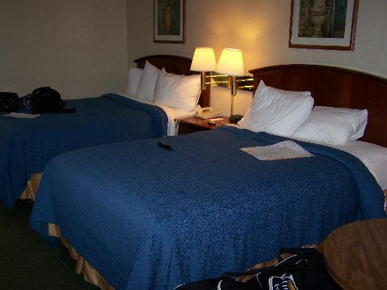 University Quality Inn : The beds in our 2nd room.