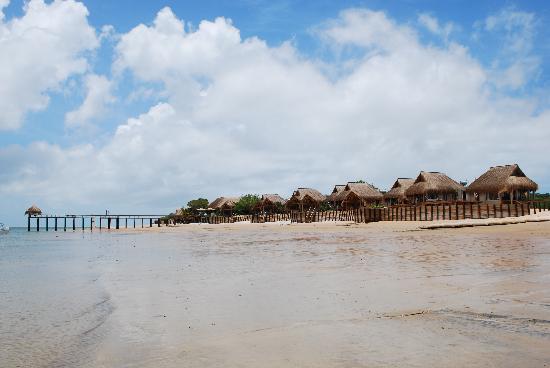 Dugong Beach Lodge: Fronte mare Dugong