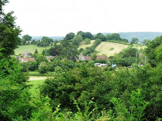 Milton's Country Lodge: Area