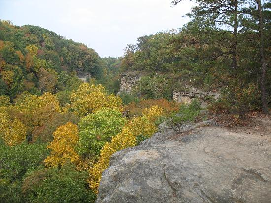The Most Beautiful Place In Ohio Hocking Hills State Park Pictures Tripadvisor