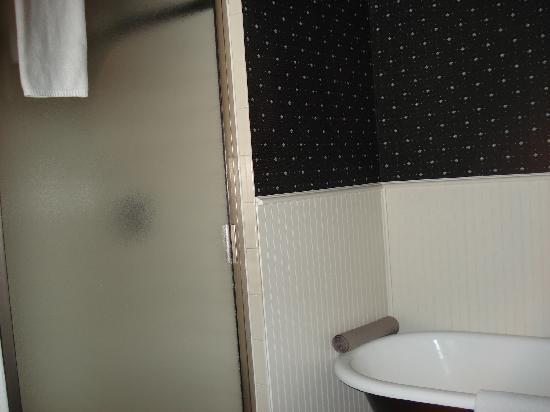 Gibson Inn: Shower