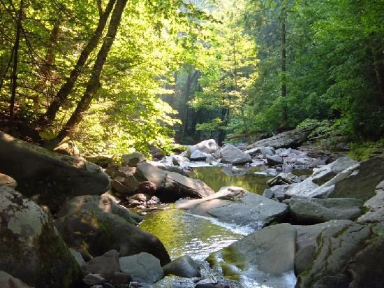 Appalachian Trail: Bach am Weg