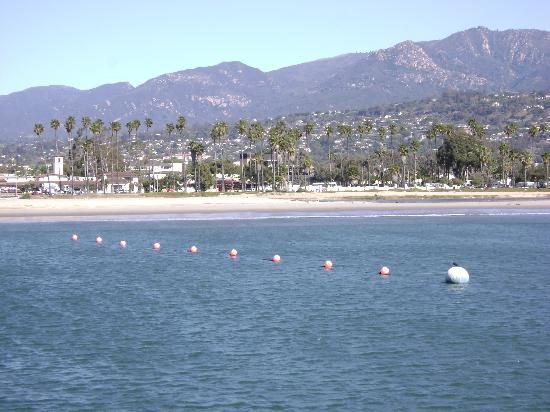 View from santa barbara pier picture of santa barbara for Santa barbara fishing report