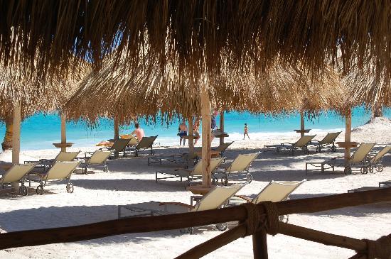 Iberostar Grand Hotel Bavaro : Beach Area