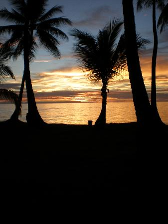 Chuuk, Micronesia: Sunset with the palm trees