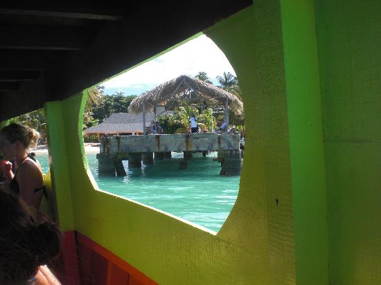 Trynidad i Tobago: View from Cool Runnings Coral Reef tour boat