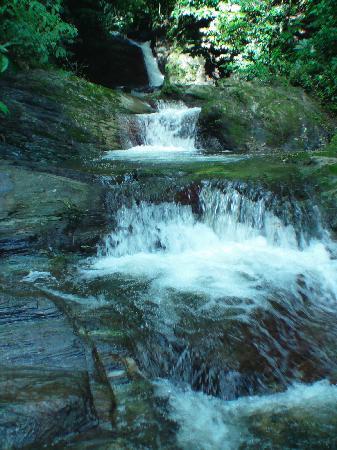 Trinidad and Tobago - Maracas Falls - YouTube  Trinidad And Tobago Maracas Falls