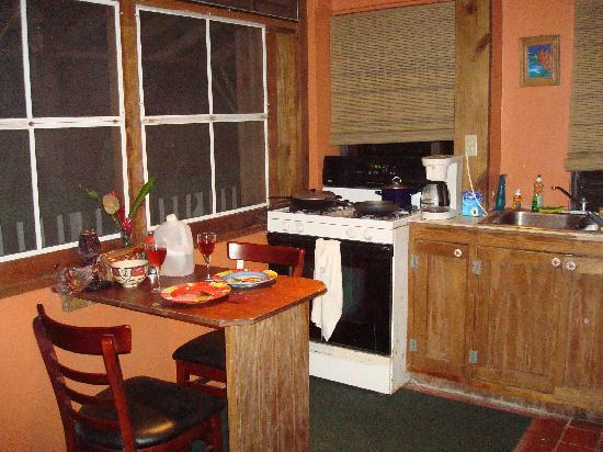 Sue's Place: Loft Kitchen