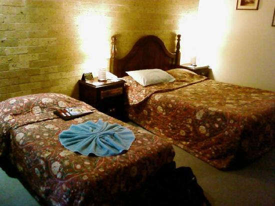 Lincoln Cottage Motor Inn: Standard room 2