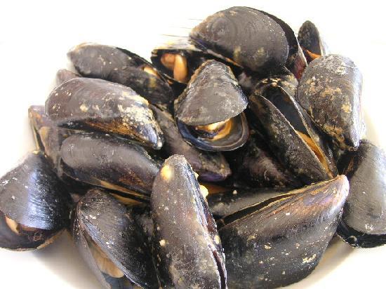Merendero de la Mari : 身が大きく濃厚なホワイトソース煮のムール貝