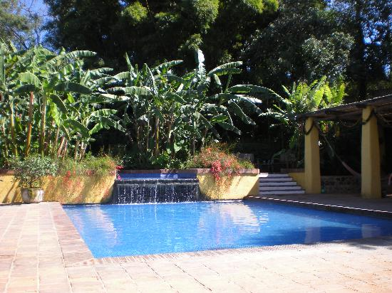 Quinta de las Flores: The pool