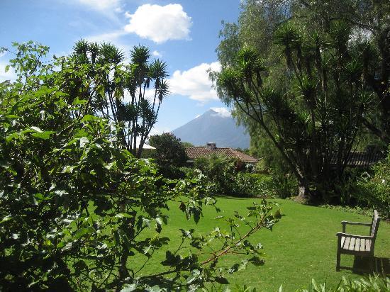Quinta de las Flores: view of the volcano