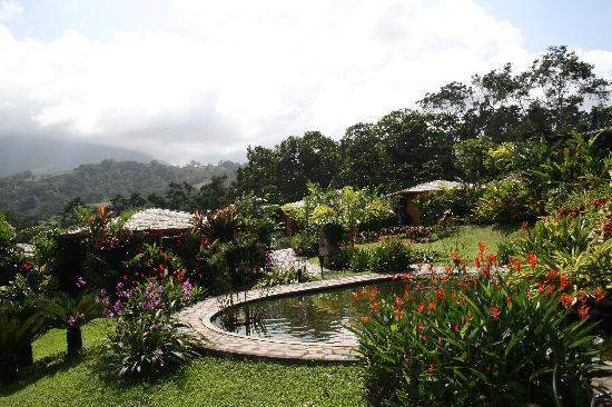 Nayara Resort Spa & Gardens : Stunningly beautiful!