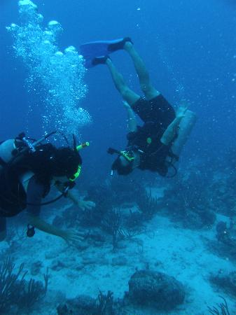 Private Diving: We had so much fun we're planning our trip back!