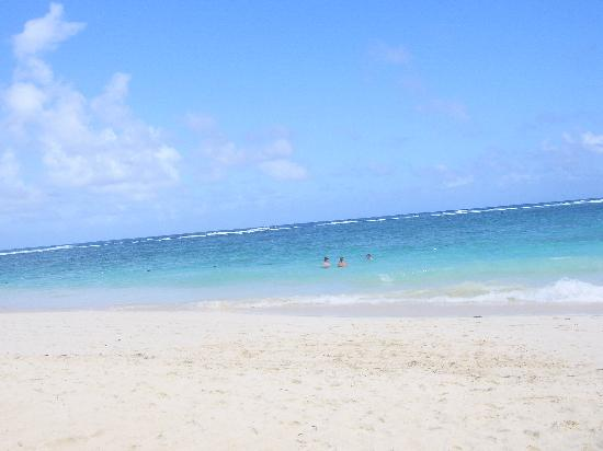 Majestic Colonial Punta Cana: Beaches