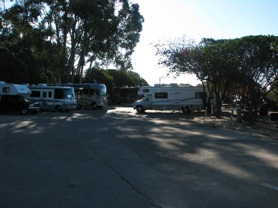 Carpinteria State Beach Campground : view up the street