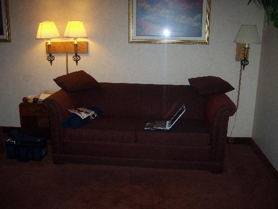 The Buena Park Hotel & Suites: uncomfortable sofa bed