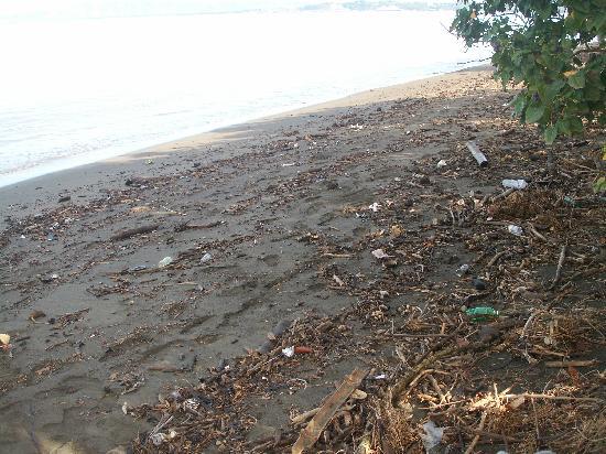 Ej Extremo De Playa Llena De Mierda Cerca De Mayaguez